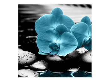 Tablou cu flori de orhidee albastre (K012398K7070)