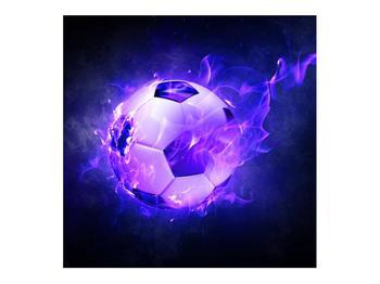 Tablou cu mingea de footbal în plasă (K014164K7070)