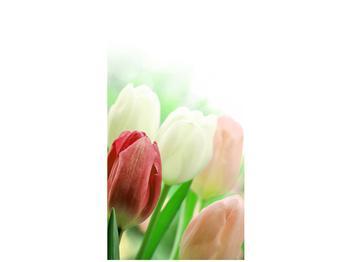 Fotoroleta R012181R80150 (R012181R80150)