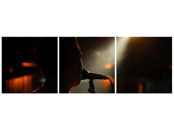 Obraz siluety zpěváka (F000041F9030)