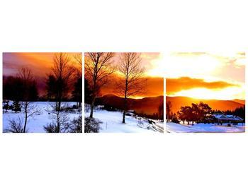 Obraz zimní krajiny (F000192F9030)