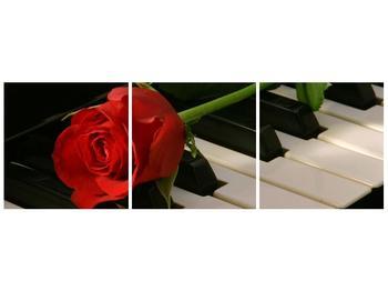 Obraz klavíru a růže (F000382F9030)