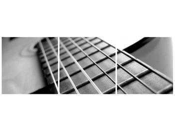 Obraz kytarových strun (F000468F9030)