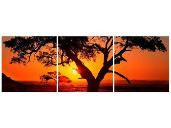 Obraz ohnivého západu slunce (F001288F9030)