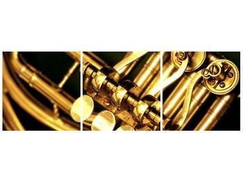 Obraz detailu hudebního nástroje (F001432F9030)