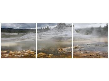 Obraz jev přírody (F001553F9030)