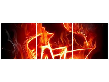 Obraz ohnivé postavy (F001691F9030)