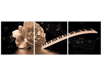 Černobílý obraz růže a klavíru (F001875F9030)