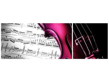 Obraz růžových houslí (F002077F9030)