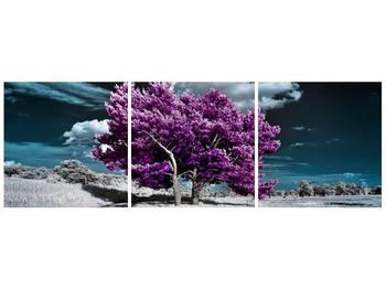 Obraz fialových stromů na pláni (F002391F9030)