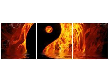 Obraz hořícího Jin Jangu  (F002885F9030)