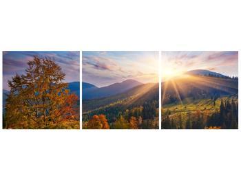 Moderní obraz F006016F9030 (F006016F9030)