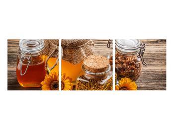 Obraz medů (K011205K9030)