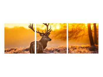 Obraz jeleňa (K011281K9030)