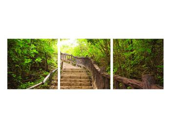 Tablou cu trepte ducând prin peisaj (K011329K9030)