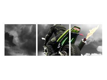 Tablou cu motociclist pe motocicletă (K011383K9030)