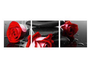 Obraz růže (K011400K9030)