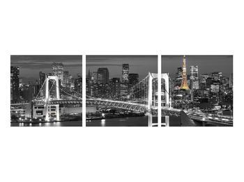 Obraz mostu (K011529K9030)