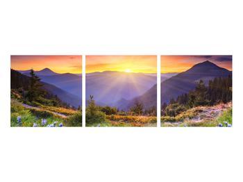 Obraz lesní krajiny (K011868K9030)