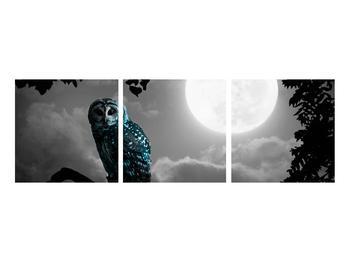 Tablou cu bufnița nocturnă (K012185K9030)