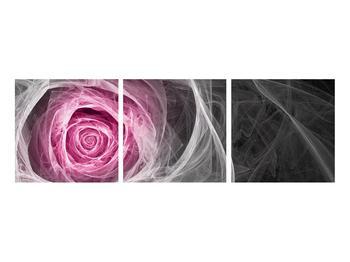 Abstraktní obraz růže (K014952K9030)