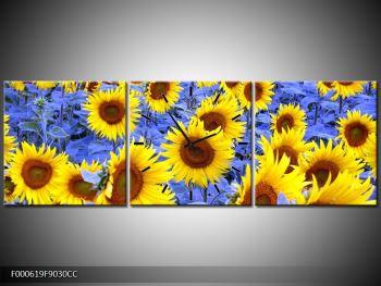 Obraz slunečnic (F000619F9030CC)