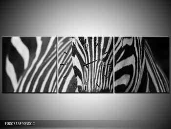 Obraz černobílého detailu zebry (F000715F9030CC)