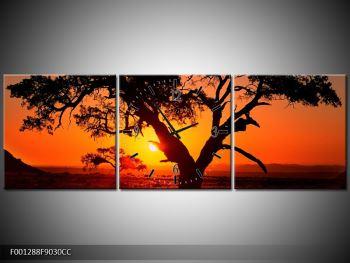 Obraz ohnivého západu slunce (F001288F9030CC)