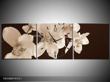 Krásný obraz bílých květin (F001888F9030CC)