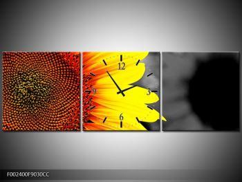 Obraz květu slunečnice (F002400F9030CC)