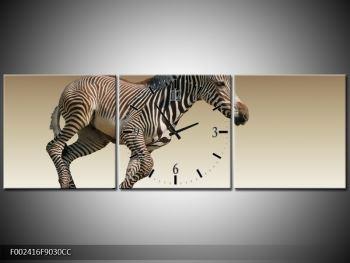 Obraz běžící zebry (F002416F9030CC)