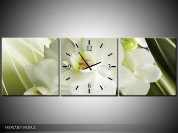 Obraz s hodinami F004710F9030CC (F004710F9030CC)