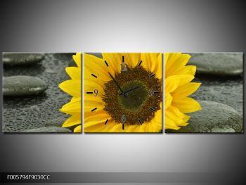 Moderní obraz F005794F9030CC (F005794F9030CC)