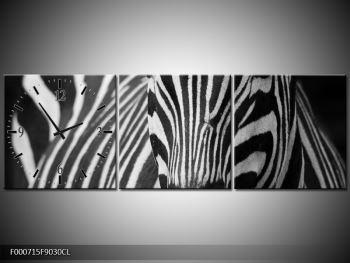 Obraz černobílého detailu zebry (F000715F9030CL)