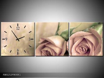Obraz jemných růží (F001212F9030CL)