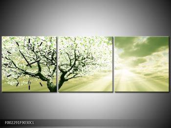 Obraz stromu na jaře (F002291F9030CL)