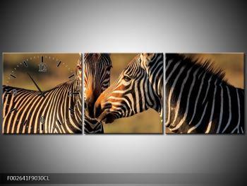 Obraz dvou zeber  (F002641F9030CL)