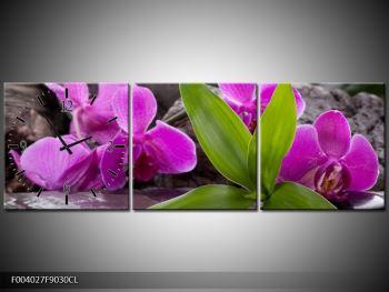 Obraz fialových orchidejí s listím (F004027F9030CL)