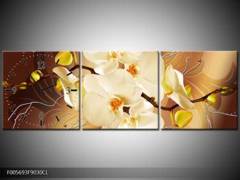 Krásný obraz orchidejí (F005693F9030CL)