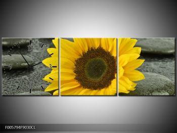 Moderní obraz F005794F9030CL (F005794F9030CL)