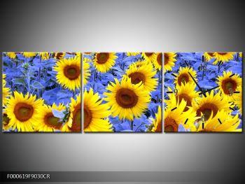 Obraz slunečnic (F000619F9030CR)