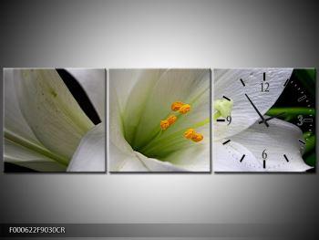 Fotoroleta F000622F9030CR (F000622F9030CR)