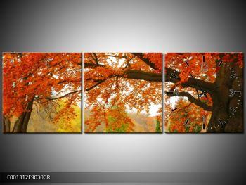 Krásný obraz podzimního parku (F001312F9030CR)