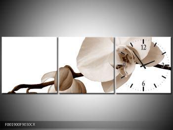 Krásný obraz bílé orchideje (F001900F9030CR)