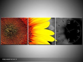 Obraz květu slunečnice (F002400F9030CR)