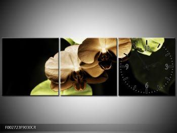 Obraz hnědých a zelených orchideí  (F002723F9030CR)