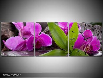 Obraz fialových orchidejí s listím (F004027F9030CR)