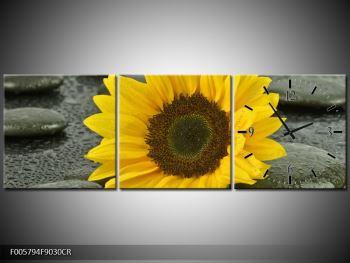 Moderní obraz F005794F9030CR (F005794F9030CR)