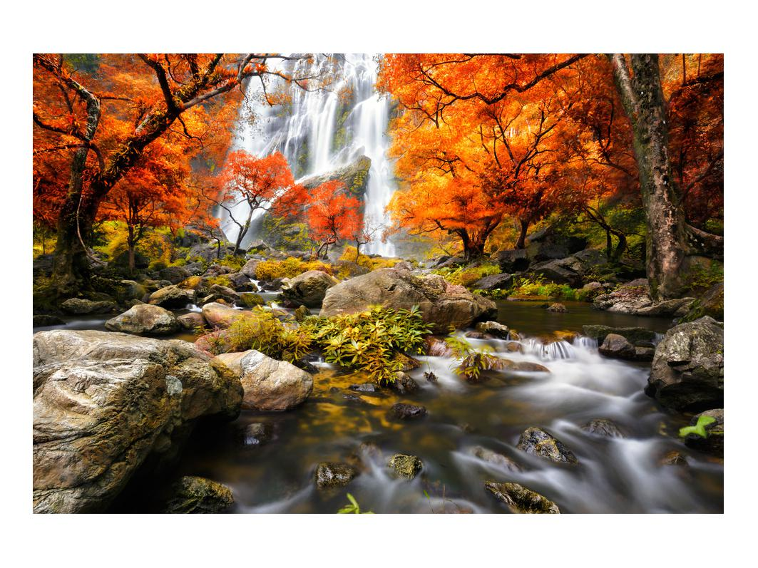 Slika jesenskog krajolika (K012335K9060)