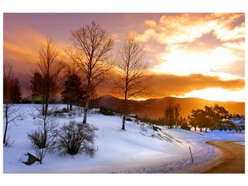Obraz zimní krajiny (F000031F9060)
